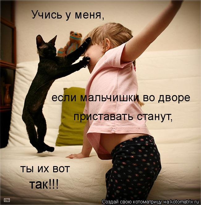 Котоматрица: Учись у меня, если мальчишки во дворе приставать станут, ты их вот  так!!!