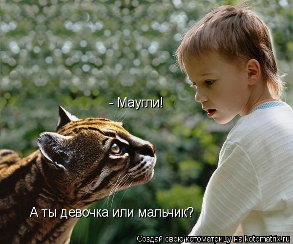 Котоматрица: - Маугли! А ты девочка или мальчик?