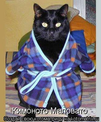Котоматрица: Кимоното Маловато