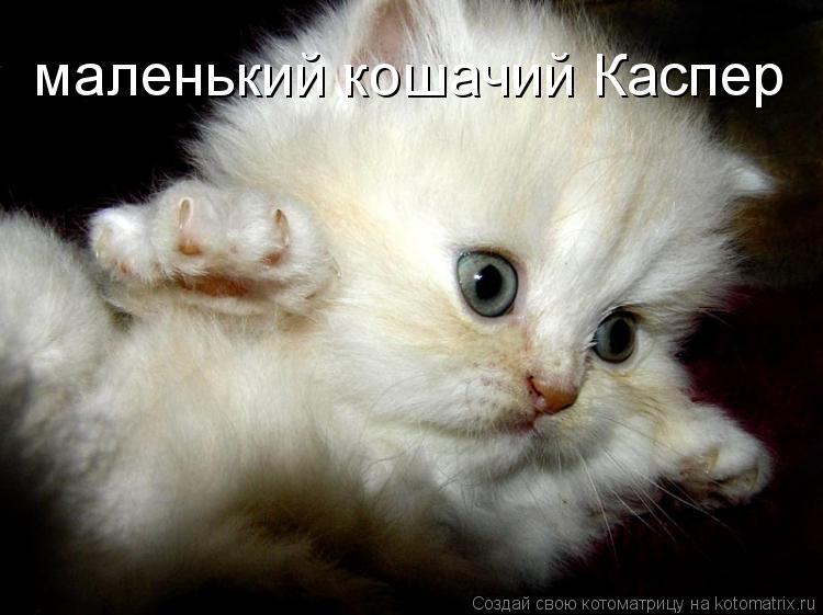 Котоматрица: маленький кошачий Каспер
