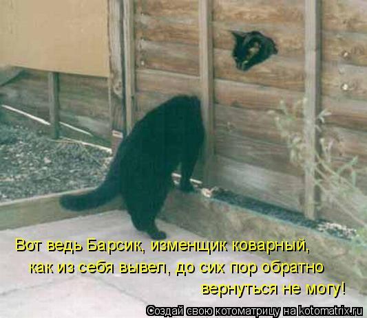 Котоматрица: Вот ведь Барсик, изменщик коварный,  как из себя вывел, до сих пор обратно  вернуться не могу!