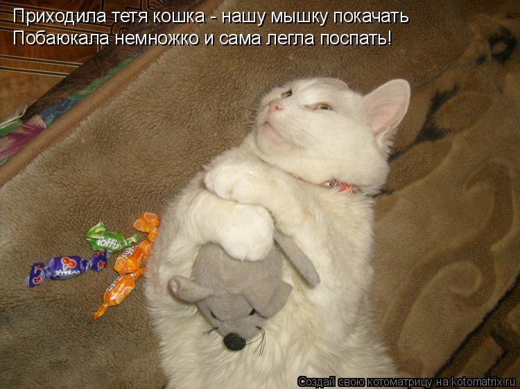 Котоматрица: Приходила тетя кошка - нашу мышку покачать Побаюкала немножко и сама легла поспать!