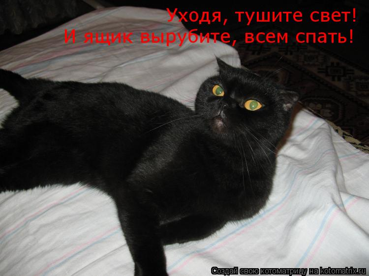 Котоматрица: Уходя, тушите свет! И ящик вырубите, всем спать!