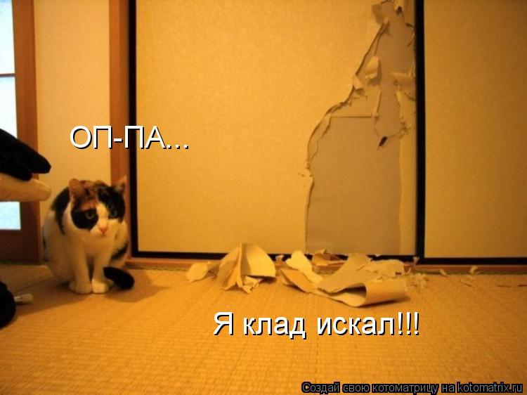 Котоматрица: ОП-ПА... Я клад искал!!!