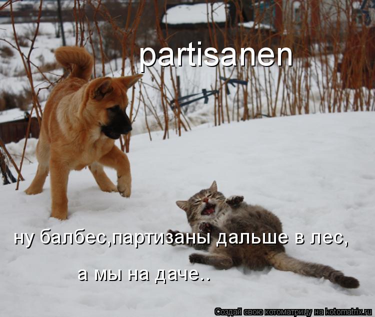 Котоматрица: partisanen ну балбес,партизаны дальше в лес, а мы на даче..