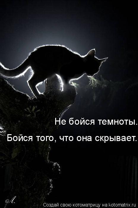 Котоматрица: Не бойся темноты. Бойся того, что она скрывает.