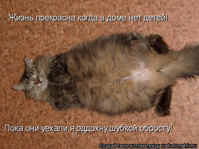 Котоматрица: Жизнь прекрасна когда в доме нет детей! Пока они уехали я оддохну,шубкой обросту!