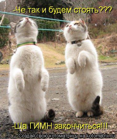 Котоматрица: -Че так и будем стоять???  -Че так и будем стоять???  -Ща ГИМН закончиться!!! -Ща ГИМН закончиться!!! -Ща ГИМН закончиться!!!