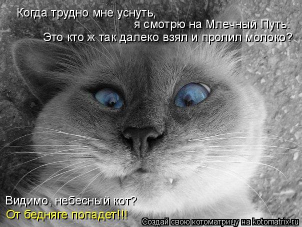 Котоматрица: Когда трудно мне уснуть,  я смотрю на Млечный Путь: Это кто ж так далеко взял и пролил молоко? Видимо, небесный кот? От бедняге попадет!!!