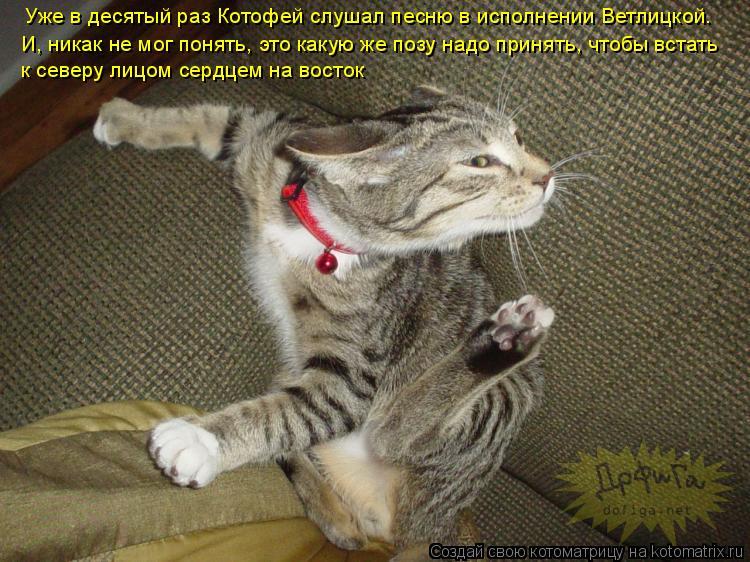 http://kotomatrix.ru/images/lolz/2009/04/03/4n.jpg