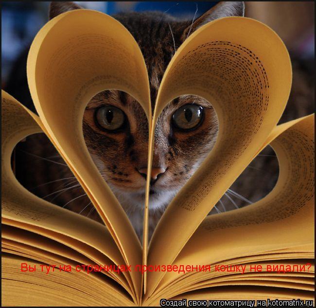 Котоматрица: Вы тут на страницах произведения кошку не видали?
