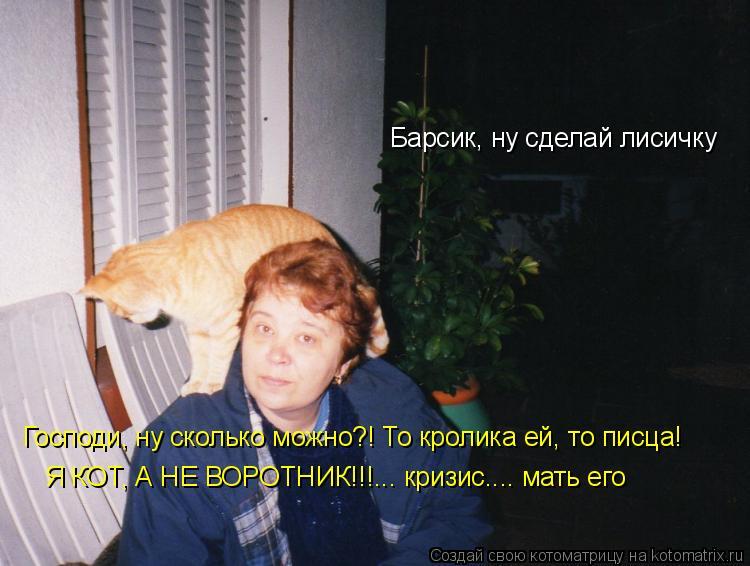 Котоматрица: Барсик, ну сделай лисичку Господи, ну сколько можно?! То кролика ей, то писца! Я КОТ, А НЕ ВОРОТНИК!!!... кризис.... мать его
