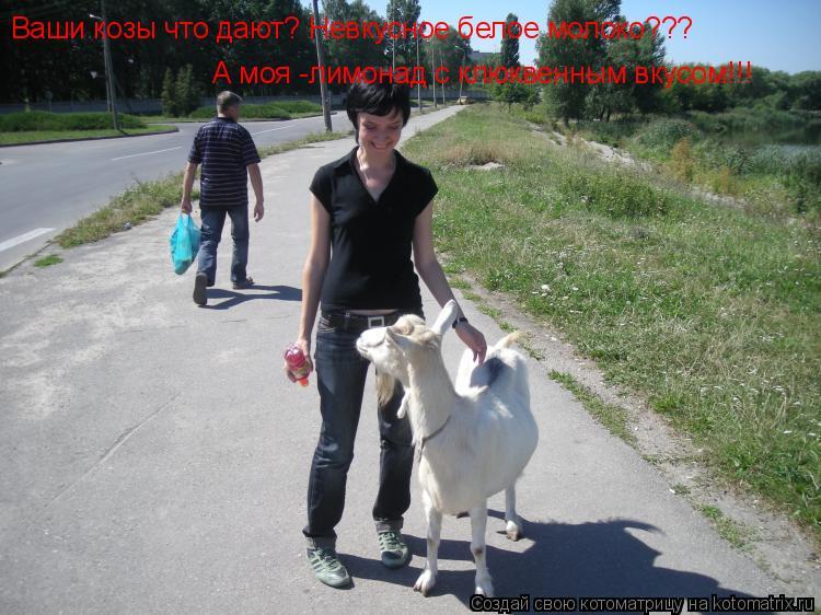Котоматрица: Ваши козы что дают? Невкусное белое молоко???  А моя -лимонад с клюквенным вкусом!!!