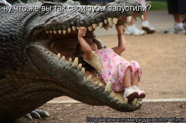 Котоматрица: ну что же вы так свои зубы запустили?