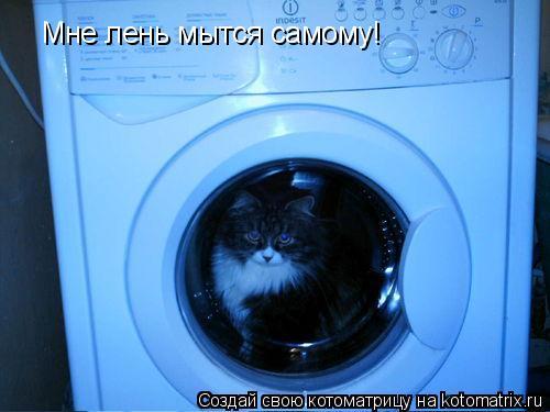 Котоматрица: Мне лень мытся самому!