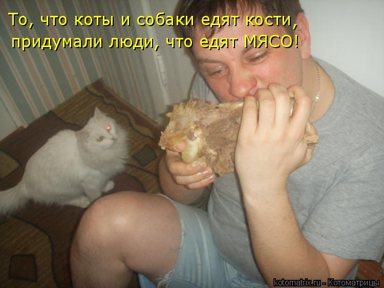 Котоматрица: То, что коты и собаки едят кости придумали люди, что едят МЯСО! ,