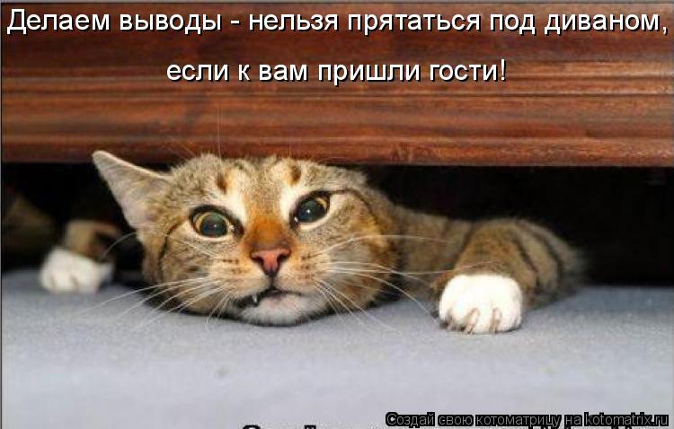 Котоматрица: Делаем выводы - нельзя прятаться под диваном, если к вам пришли гости!