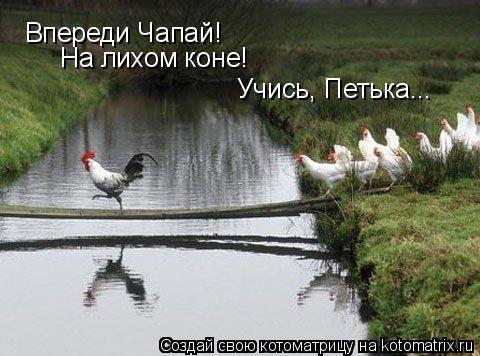 Котоматрица: Впереди Чапай! Впереди Чапай! На лихом коне! Учись, Петька...