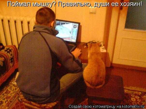 Котоматрица: Поймал мышку? Правильно, души ее хозяин!