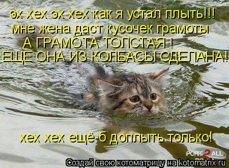 Котоматрица: эх хех эх хех как я устал плыть!!! мне жена даст кусочек грамоты А ГРАМОТА ТОЛСТАЯ ! ЕЩЕ ОНА ИЗ КОЛБАСЫ СДЕЛАНА! хех хех ещё-б доплыть только!