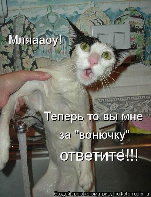 """Котоматрица: Мляааоу! Теперь то вы мне за """"вонючку"""" ответите!!!"""