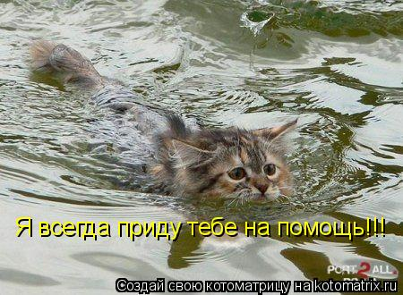 Котоматрица: Я всегда приду тебе на помощь!!!