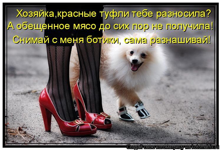 Сними с меня туфли раб 27 фотография