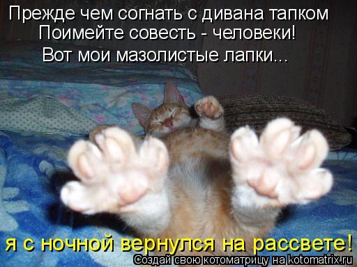 Котоматрица: Прежде чем согнать с дивана тапком Поимейте совесть - человеки! Вот мои мазолистые лапки... я с ночной вернулся на рассвете!
