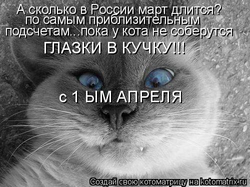 Котоматрица: А сколько в России март длится? по самым приблизительным  подсчетам...пока у кота не соберутся  ГЛАЗКИ В КУЧКУ!!! с 1 ЫМ АПРЕЛЯ