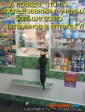 Котоматрица: А правда, что по  исследованиям  учёных,  больше всего  витаминов в аптеках?!.