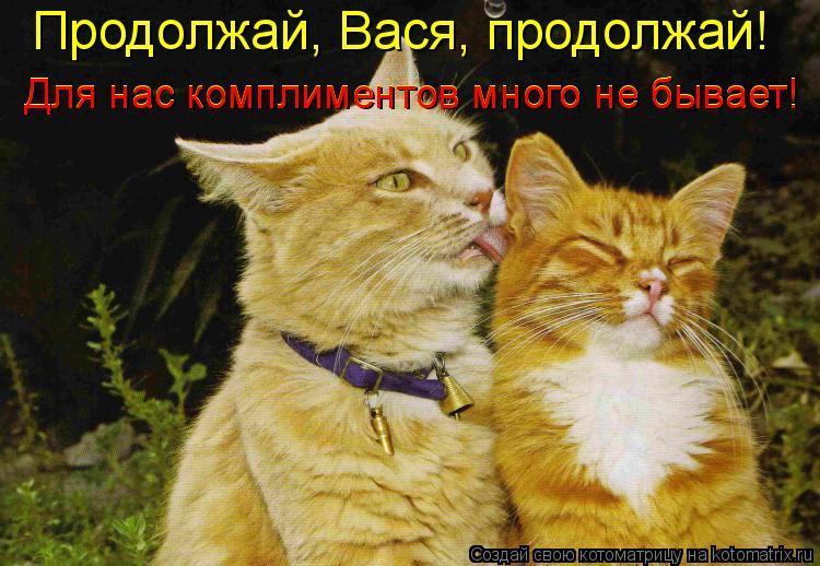 Котоматрица: Продолжай, Вася, продолжай! Для нас комплиментов много не бывает! Для нас комплиментов много не бывает!