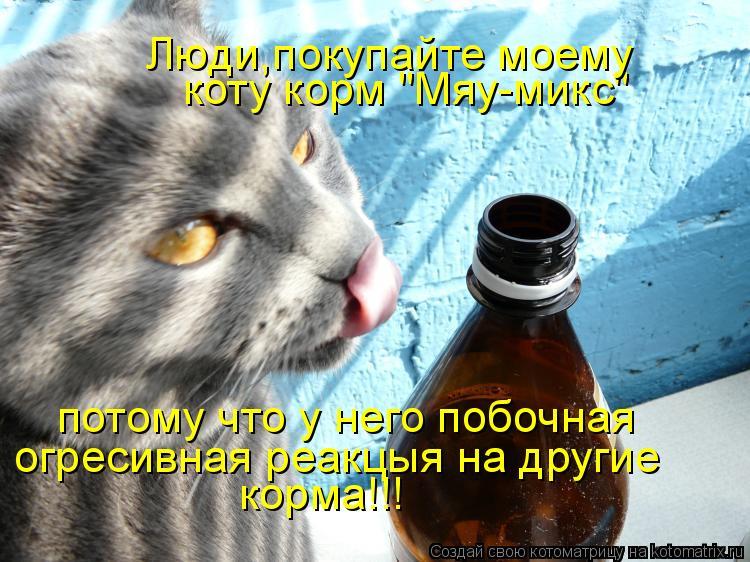 """Котоматрица: коту корм """"Мяу-микс"""" потому что у него побочная огресивная реакцыя на другие  корма!!! Люди,покупайте моему"""