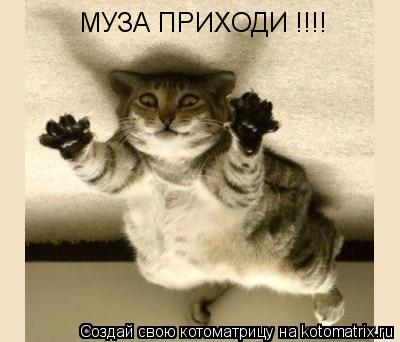 Котоматрица: МУЗА ПРИХОДИ !!!!