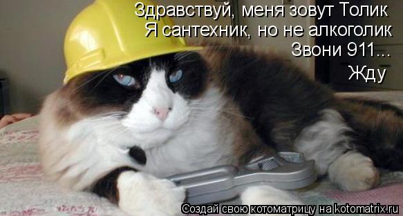 Котоматрица: Здравствуй, меня зовут Толик Я сантехник, но не алкоголик Звони 911... Жду