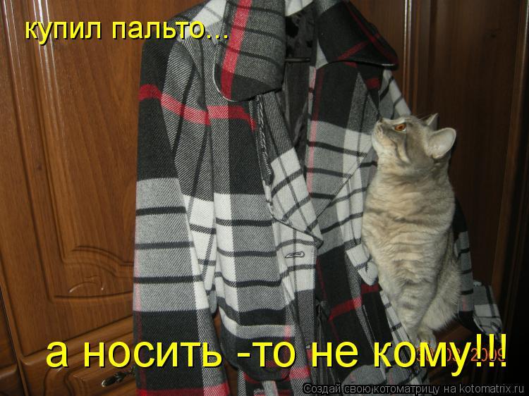 Котоматрица: купил пальто... а носить -то не кому!!!