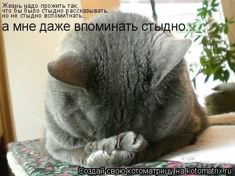Котоматрица: Жизнь надо прожить так, что бы было стыдно рассказывать Жизнь надо прожить так, что бы было стыдно рассказывать... но не стыдно вспомитнать..