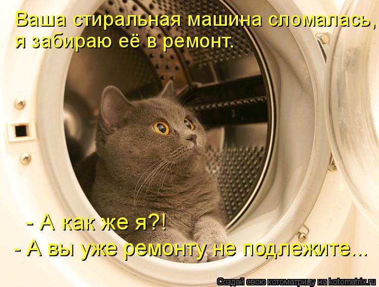 Котоматрица: Ваша стиральная машина сломалась,  я забираю её в ремонт. - А как же я?! - А вы уже ремонту не подлежите... - А вы уже ремонту не подлежите...