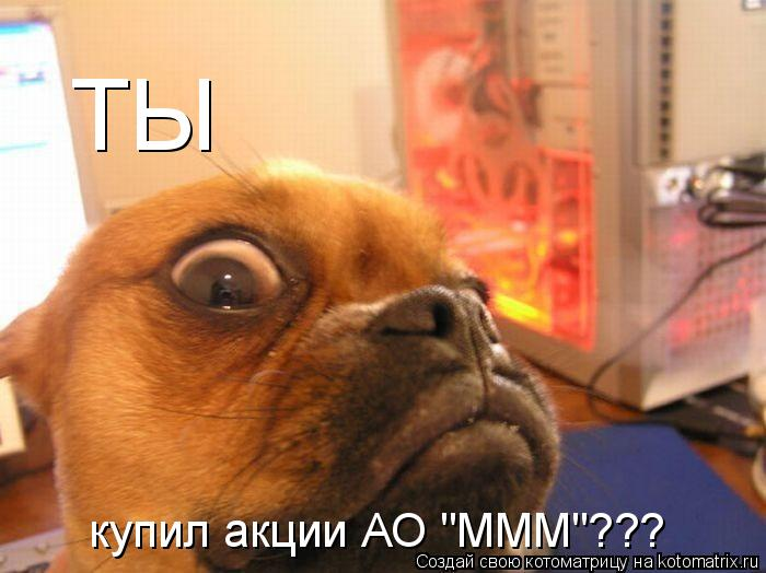 "Котоматрица: ТЫ   купил акции АО ""МММ""???"