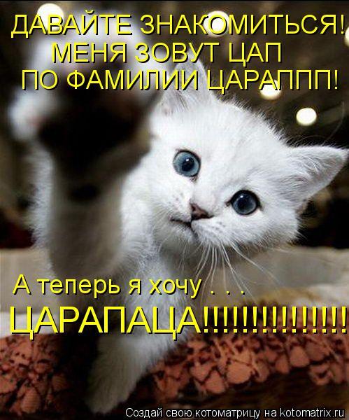 Котоматрица: ДАВАЙТЕ ЗНАКОМИТЬСЯ! МЕНЯ ЗОВУТ ЦАП МЕНЯ ЗОВУТ ЦАП ПО ФАМИЛИИ ЦАРАППП! А теперь я хочу . . .  ЦАРАПАЦА!!!!!!!!!!!!!!!!