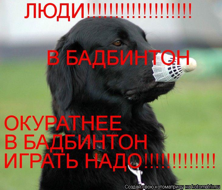 Котоматрица: ЛЮДИ!!!!!!!!!!!!!!!!!!! ОКУРАТНЕЕ  В БАДБИНТОН  В БАДБИНТОН  ИГРАТЬ НАДО!!!!!!!!!!!!!
