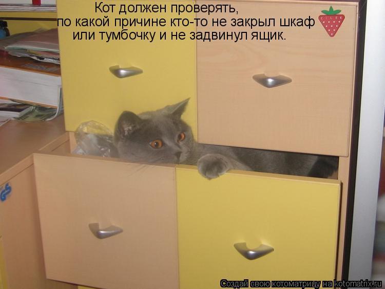 Котоматрица: Кот должен проверять,  по какой причине кто-то не закрыл шкаф    или тумбочку и не задвинул ящик.