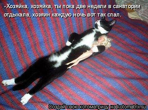 Котоматрица: отдыхала, хозяин каждую ночь вот так спал. -Хозяйка, хозяйка, ты пока две недели в санатории