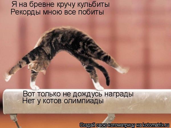 Я на бревне кручу кульбиты Рекорды мною все побиты Вот только не дождусь награды Нет у котов олимпиады
