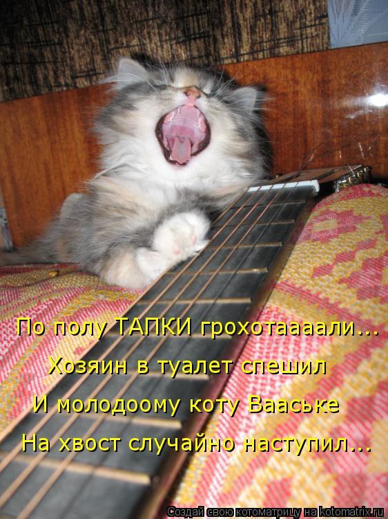 Котоматрица: По полу ТАПКИ грохотаааали...  Хозяин в туалет спешил И молодоому коту Вааське  На хвост случайно наступил...