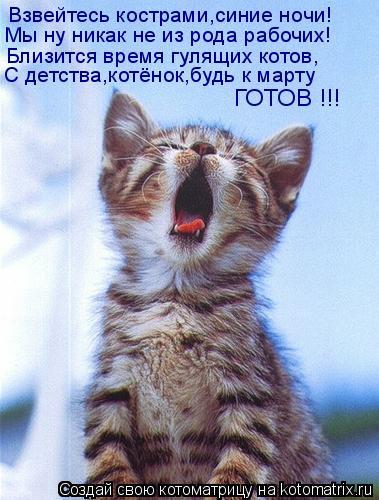 Взвейтесь кострами,синие ночи! Мы ну никак не из рода рабочих! Близится время гулящих котов, С детства,котёнок,будь к марту ГОТОВ !!!