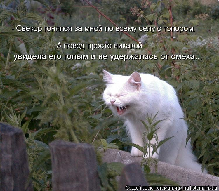 Котоматрица: - Свекор гонялся за мной по всему селу с топором. увидела его голым и не удержалась от смеха... А повод просто никакой: