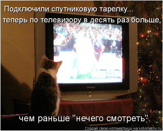 """Котоматрица: Подключили спутниковую тарелку... теперь по телевизору в десять раз больше, чем раньше """"нечего смотреть""""."""