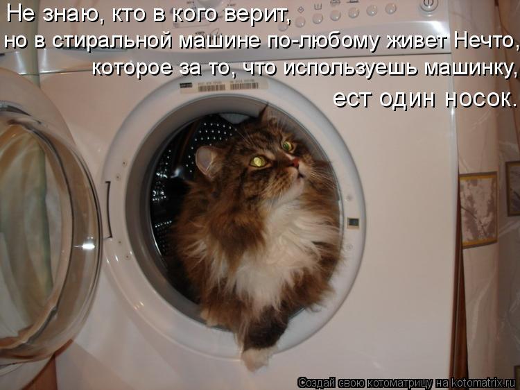 Котоматрица: Не знаю, кто в кого верит,  но в стиральной машине по-любому живет Нечто, которое за то, что используешь машинку, ест один носок.