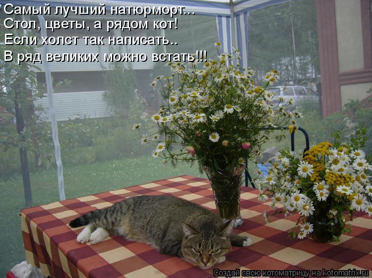 Котоматрица: Самый лучший натюрморт... Стол, цветы, а рядом кот! Если холст так написать.. В ряд великих можно встать!!!