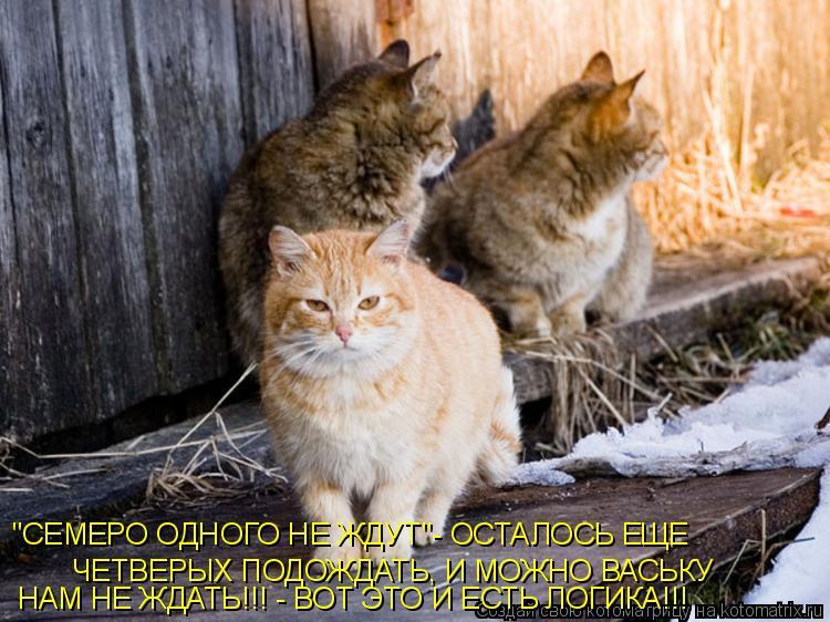 """Котоматрица: """"СЕМЕРО ОДНОГО НЕ ЖДУТ""""- ОСТАЛОСЬ ЕЩЕ  ЧЕТВЕРЫХ ПОДОЖДАТЬ, И МОЖНО ВАСЬКУ  НАМ НЕ ЖДАТЬ!!! - ВОТ ЭТО И ЕСТЬ ЛОГИКА!!!"""